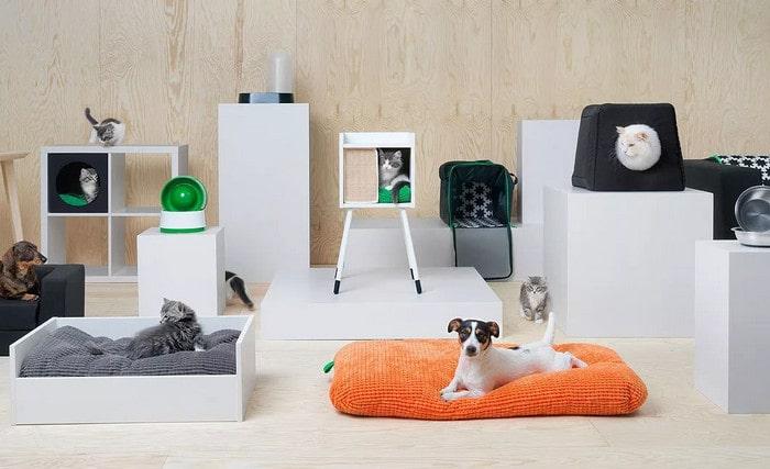 Бизнес-идея: изготовление и продажа мебели для животных